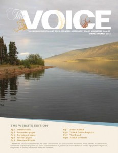 Voice Cover Spring Summer 2013